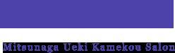 Mitsunaga Ueki Kamekou Salon